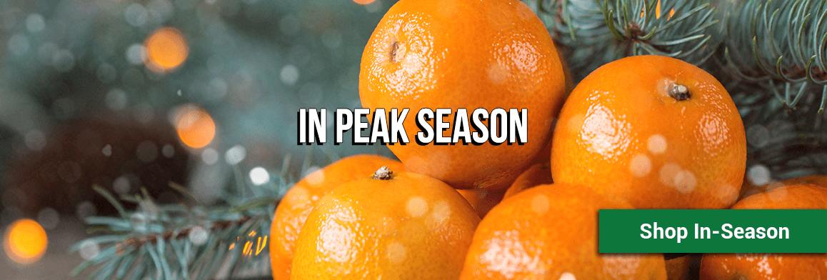 in-season-winter